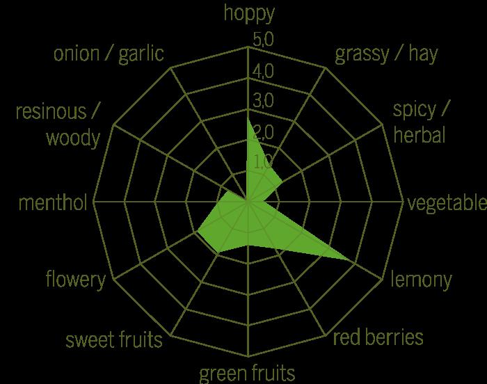Mandarina Raw hops